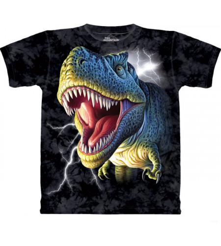 t rex tee shirt dinosaure enfant the mountain