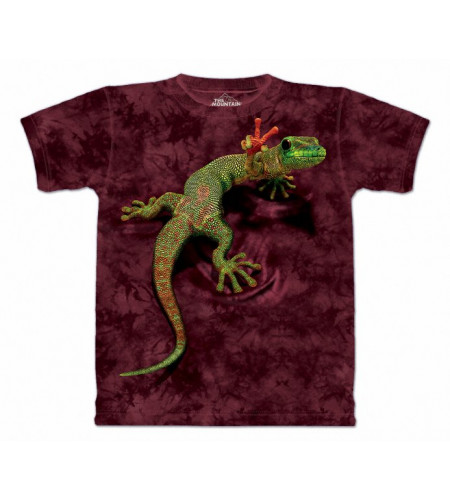 t-shirt enfant lézard the mountain gecko