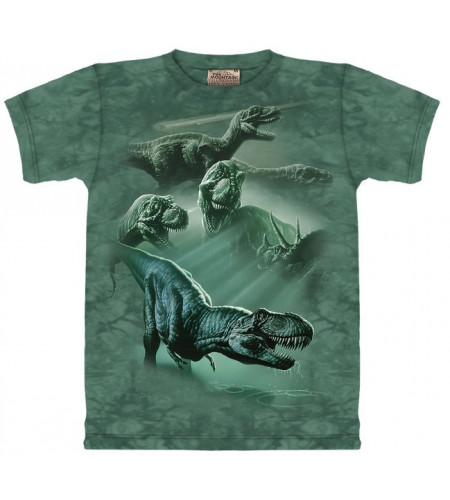 Dinosaures -nT-shirt enfant - The Mountain