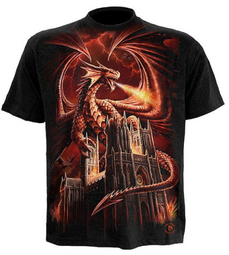 tee shirt de dragon