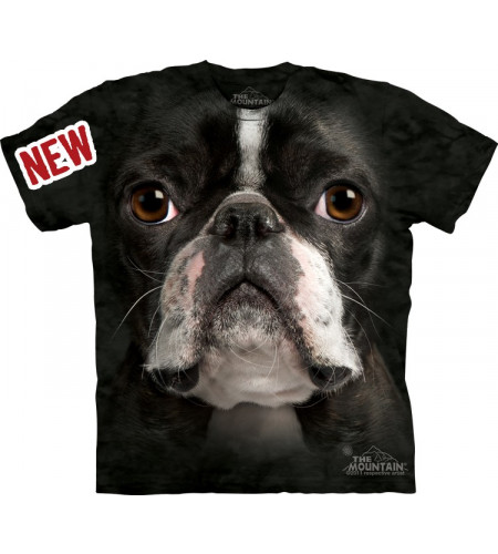 tee shirt chien boston terrier