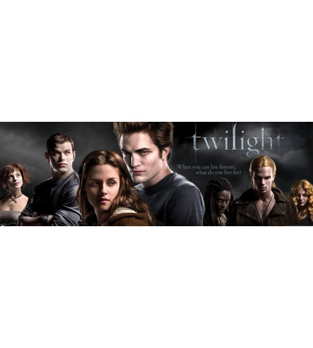 Twilight film - Poster de porte