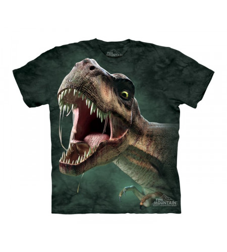 Rex roar - T-shirt enfant dinosaure - The Mountain