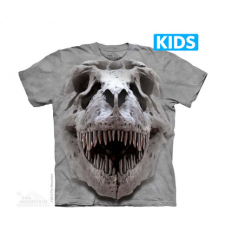 boutique t-shirt the mountain enfant t-rex