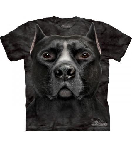 t-shirt chien de race big face