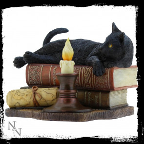 The witching hour - Figurine chat - Lisa Parker (20x19x15cm)