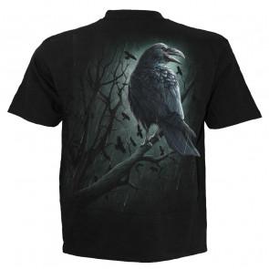 Shadow raven - T-shirt corbeau noir - Homme - Spiral