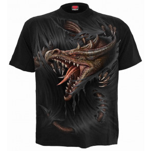 Breaking out - T-shirt dragon - Spiral - Manches courtes